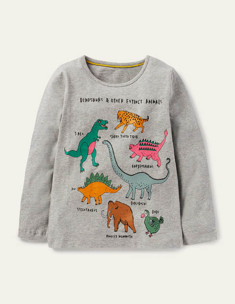T-Shirt mit lustigen Fakten - Grau Meliert, Dinosaurier