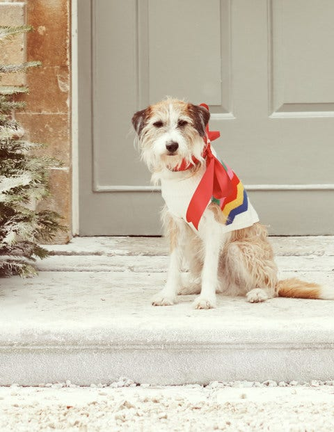 Dog Jumper - Ecru Rainbow Chevron