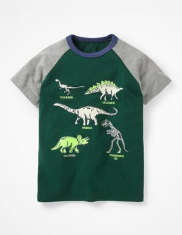 Scots Pine Green Dinosaurs Animal Raglan T-shirt