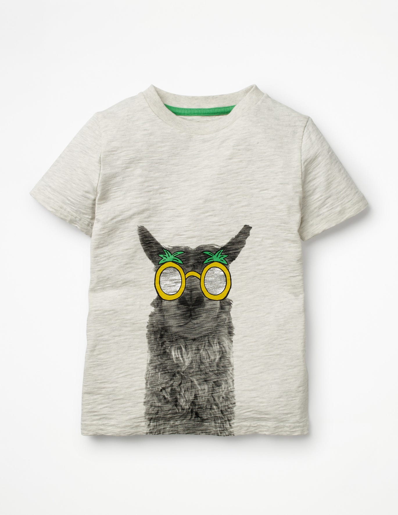 Animal Graphic T-Shirt - Oatmeal Photographic Llama