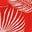 Red Pop Jungle Palm