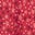 Poinsettia Sketchy Star