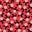 Red Pop Scattered Fruit