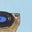 Lémurien bleu glacé