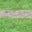 Grey Marl/Andean Toucan Green