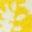 Motif floral vintage jaune jonquille
