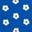 Bleu audacieux, pâquerettes espacées