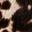 Ecru/Snow Leopard