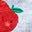 Fruit multi