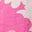Zartes Korallenrosa, Sommerliche Gänseblümchen