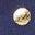 Pois dorés bleu marine tribord