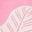 Pflaumenblütenrosa, Botanikmuster