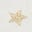 Ivory/ Gold Foil Little Star