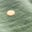 Alder, Gold Foil Spot