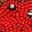 Rouges-gorges